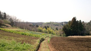 田舎暮らしではない地方移住