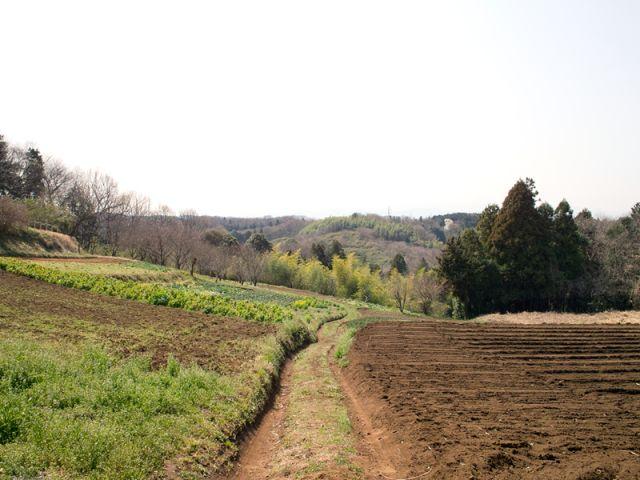 田舎暮らし