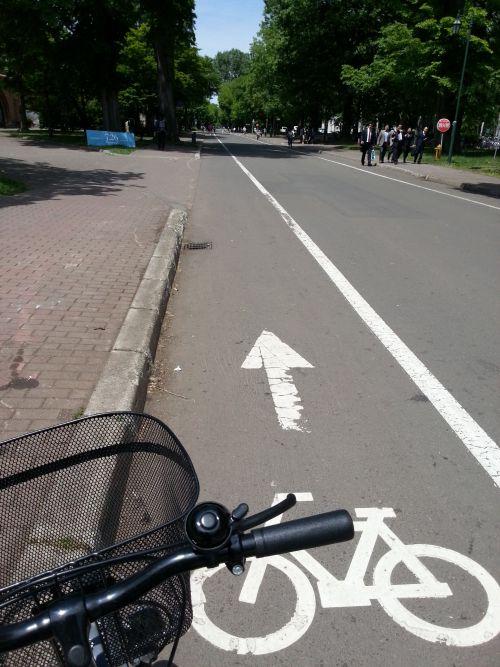 北大自転車2