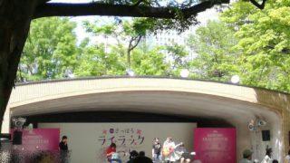札幌ラーメンショー2017とライラックまつり